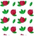 Pomegranates seamless pattern vector image vector image
