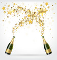 salute of champagne vector image vector image