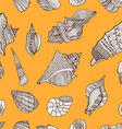 Sea Shell Pattern Background vector image vector image
