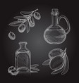 Set of olive branches with olives and bottles