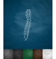 spine icon vector image