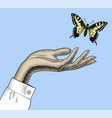 womans hand with a butterfly vector image