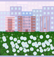 city buildings with dandelions flowers green park vector image vector image