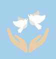 dove flying bird cartoon cute vector image