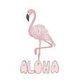 flamingo hand drawn line art vector image