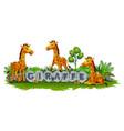 giraffe enjoy the garden vector image vector image