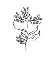 minimalist tattoo flower berries branch line art vector image vector image