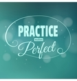 Practice makes perfest Lettering vector image
