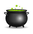 realistic detailed 3d witch cauldron vector image