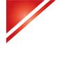 red frame corner flag vector image vector image
