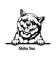 shiba inu peeking dog - head isolated on white vector image vector image