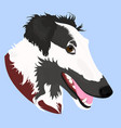 portrait of borzoi dog cute vector image
