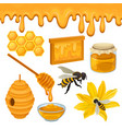 flat set of icons related to honey vector image