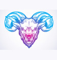 hand-drawn beautiful artwork of a ram high vector image