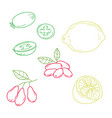 hand drawn sketch fruits - pineapple guava lime vector image