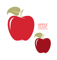 Red apple Isolated fruit on white background vector image vector image