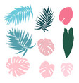 set of tropical leaves isolated design elements vector image