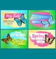 spring sale label butterfly with ornament on wings vector image