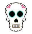 floral ornamente head skull day of the dead vector image