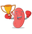 boxing winner kidney mascot cartoon style vector image vector image