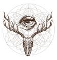 sketch of deer skull and all seeing eye outline vector image