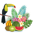 tropical garden with fruits and toucan vector image vector image