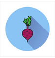 beet simple icon on white background vector image vector image