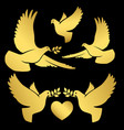 gold flying doves on black vector image vector image