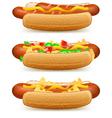 hotdog cheese tomato salad vector image vector image
