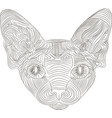 the stylized head of a sphynx cat is an ethnic vector image vector image