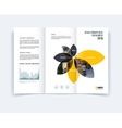 Tri-fold Brochure template layout cover design vector image