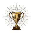 Winner s trophy award win winning champion