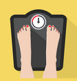feet on weight scale vector image vector image