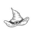 wizard hat sketch vector image vector image