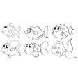 fish Sketches vector image
