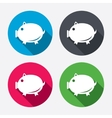 Piggy sign icon Pork symbol vector image