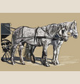 colorful harness horses vector image