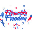 fireworks freedom on white background vector image vector image