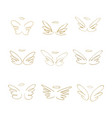hand drawn wings set of design elements vector image vector image