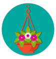 hanging flower basket with petunias vector image vector image