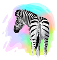 Zebra on abstract bright background vector image vector image