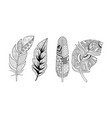 artistically drawn feathers set vintage tribal vector image