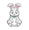 easter bunny cartoon on white vector image