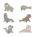 Set funny walruses and sea lions vector image vector image