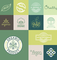 set of natural organic vegan badges vector image