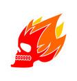 skull fire head skeleton flame flaming skull vector image vector image