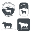 Angus Bull In White And Black vector image vector image