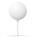 golf 22 vector image vector image