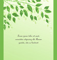 green tree leaves vector image vector image