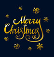 Merry Christmas and New Year 2016 lettering vector image vector image